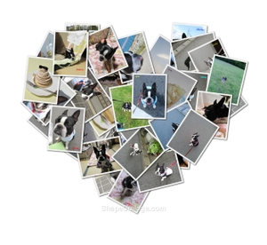 Heart1008052
